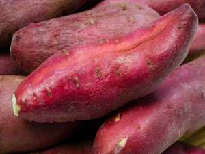 22-1374470374-5-sweetpotato